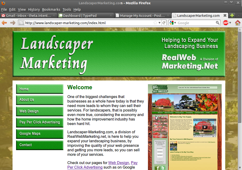 RealWebMarketing.net Launches New Site for Marketing for ...